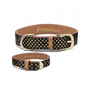 Friendship Collar Dotty about you