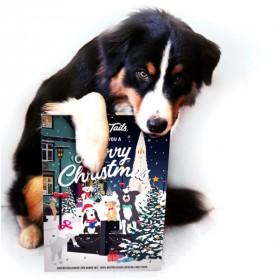 Hunde-Adventskalender Tales...