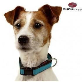 Hundehalsband PURE turqoise von SUCHtrupp